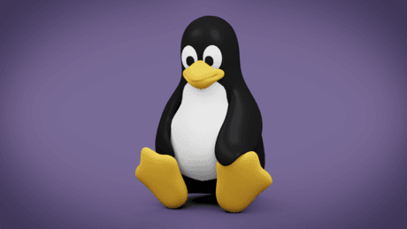 What is the Best Linux Distribution for Beginners in 2019?